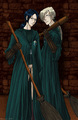 Quidditch S&L