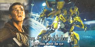 SAM BEE