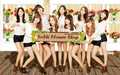 SNSD FLOWER SHOP