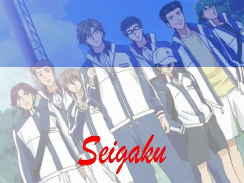 Prince of Tennis wallpaper with anime entitled Seigaku