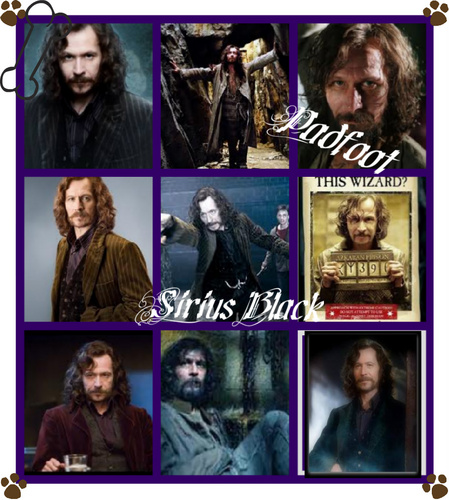 Sirius Black Collage
