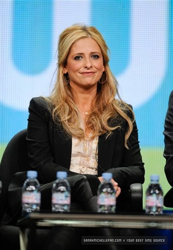 TCA Summer Press Tour - Ringer Panel