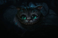 The Cheshire Cat - The Cheshire Cat 1800x1200 - the-cheshire-cat photo