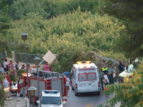 The fall of a large branch caused three injuries in Cieza- Spain --