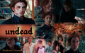 Twilight Saga Wallpaper Fan Art