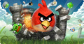angry birds attack - angry-birds photo