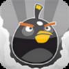 Angry Birds photo called black bird