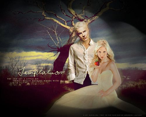 Buffy the Vampire Slayer wallpaper containing a bridesmaid entitled buffy the vampire slayer