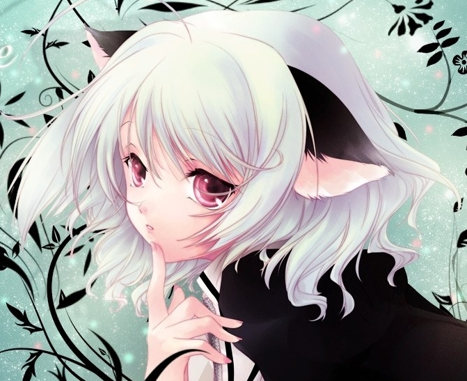 anime super fan images neko girl wallpaper and background photos