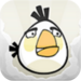 white bird - angry-birds icon