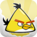 yellow bird - angry-birds icon