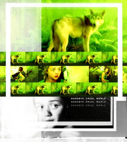 Arya & Nymeria