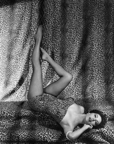 Ava Gardner Leopard