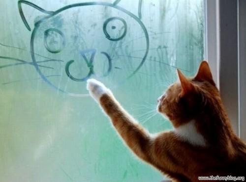 Кошки can draw too!