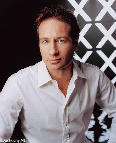 여우 Mulder