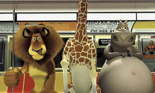 Gloria, Melman and Alex