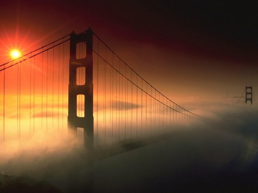 Adobe Bridge CC - Download