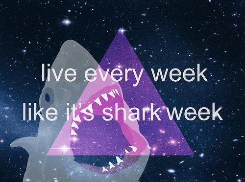 HAPPY 鲨鱼 WEEK!