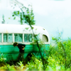 Into the Wild photo called ITW