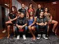 Jersey Shore Season 3 Cast Wallpaper