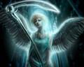 Life Angel