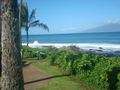 Ocean Scenes