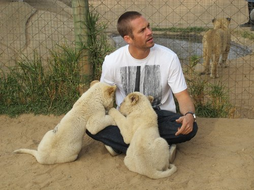 Paul in South Africa - paul-walker Photo