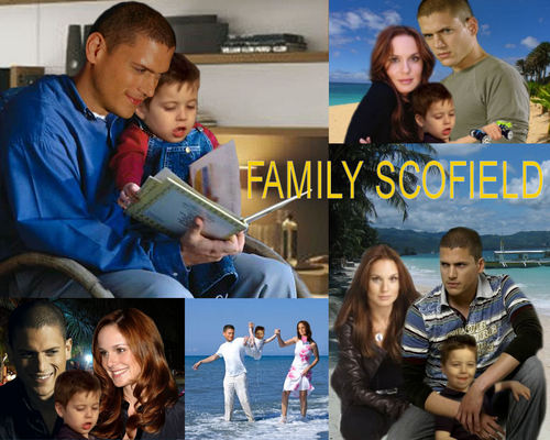 Michael and Sara wallpaper probably containing a sign titled Prison Break - Family Scofield