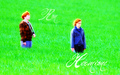 Ron and Hermione - romione wallpaper