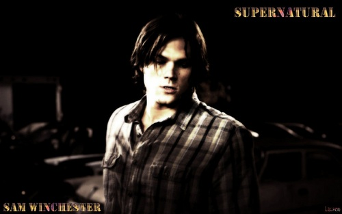 Sam Winchester wallpaper possibly containing a concert titled Sam ♥