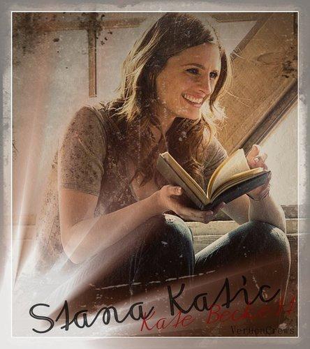 Stana Katic as Kate Beckett