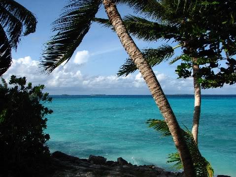 Tropical প্রতিমূর্তি