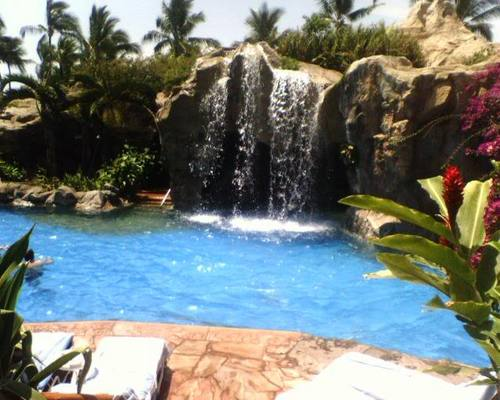 Tropical 图片