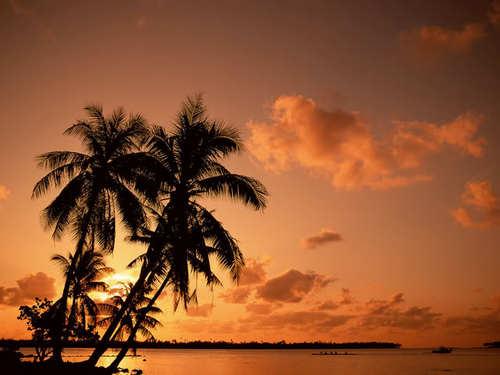 Tropical imej