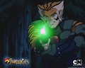 Tygra Wallpaper - thundercats-2011 wallpaper