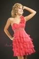 Veevee's prom dress!