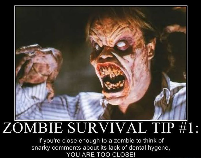 The zombie survival guide zip 64