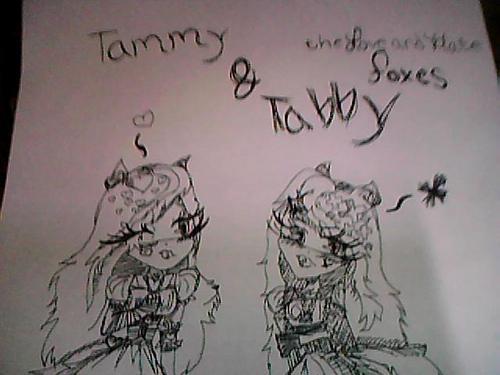 tabby: i dont need ya's love!