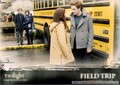 twilight-edward-bella - twilight-series photo