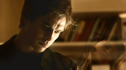 Damon & Elena kertas dinding with a bookshop, a library, and an athenaeum entitled watching my Cinta sleep