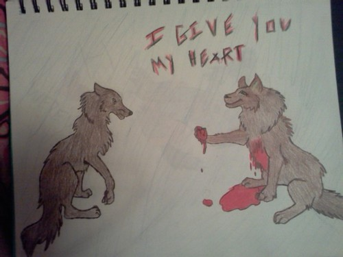 wolves i drew
