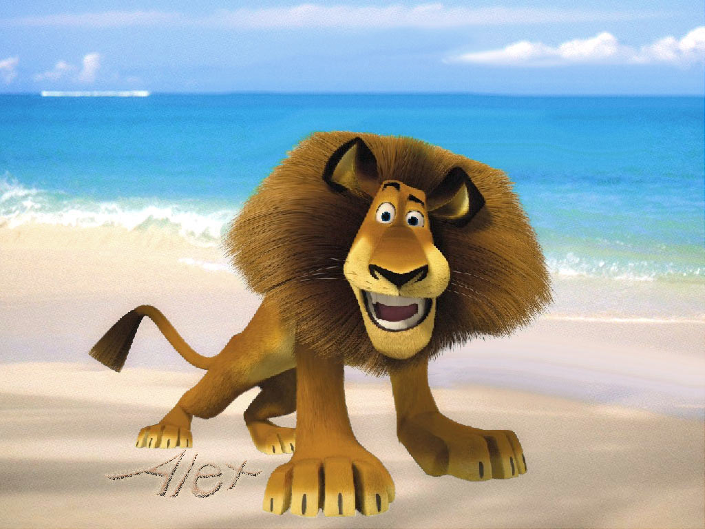 Alex The Lion Images Alex Wallpaper Hd Wallpaper And Background