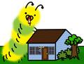 Bad news guys neighbors cats dead