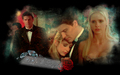 Buffy & Angel wallpaper - sarah-michelle-gellar wallpaper