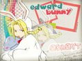 Bunny Ed~