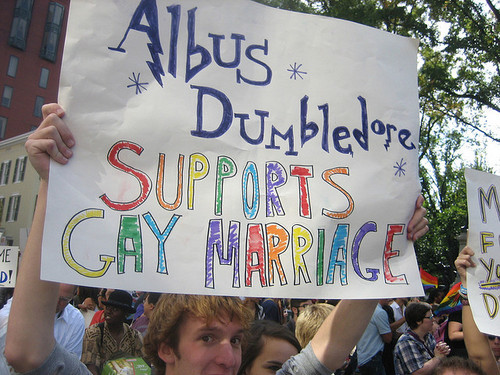 Dumbledore Supports!