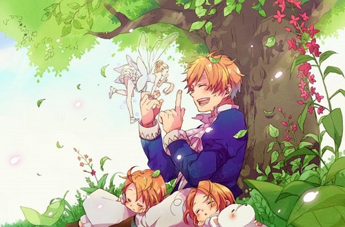 hetalia fondo de pantalla probably containing a bouquet and a rose called England chibi America chibi Canada