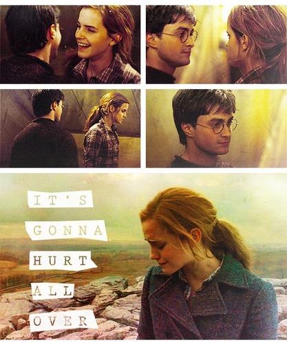 Harry/Hermione