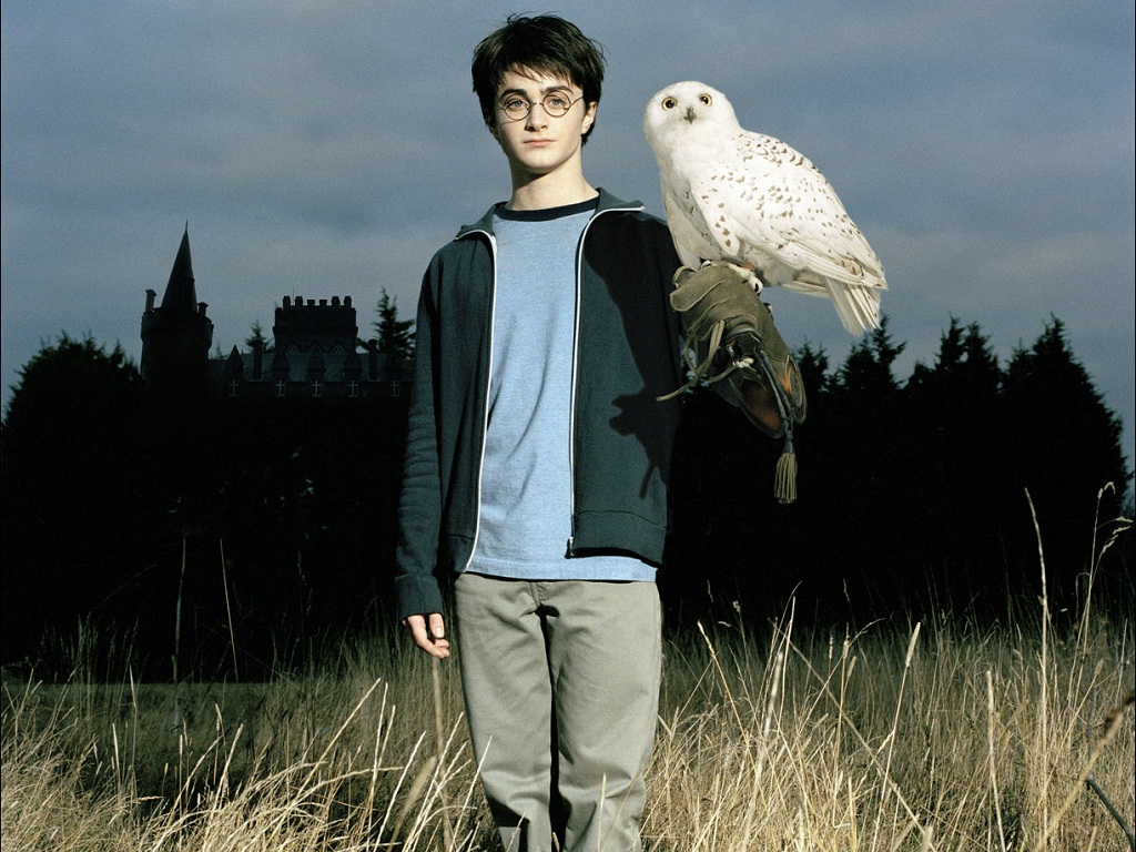 harry potter wallpaper harry potter wallpaper 24475312