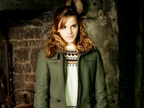 hermione granger fondo de pantalla with a business suit and a well dressed person titled Hermione Granger fondo de pantalla